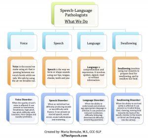 roles of a speech language pathologist